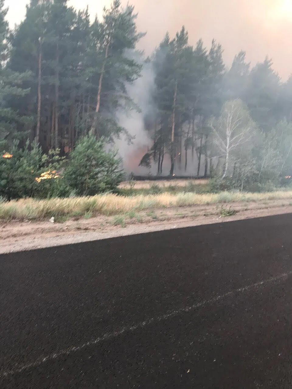Огонь охватил десятки гектаров лесов