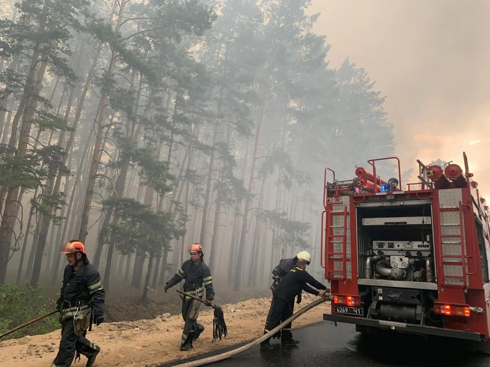 Огонь пылает на десятках гектаров лесов