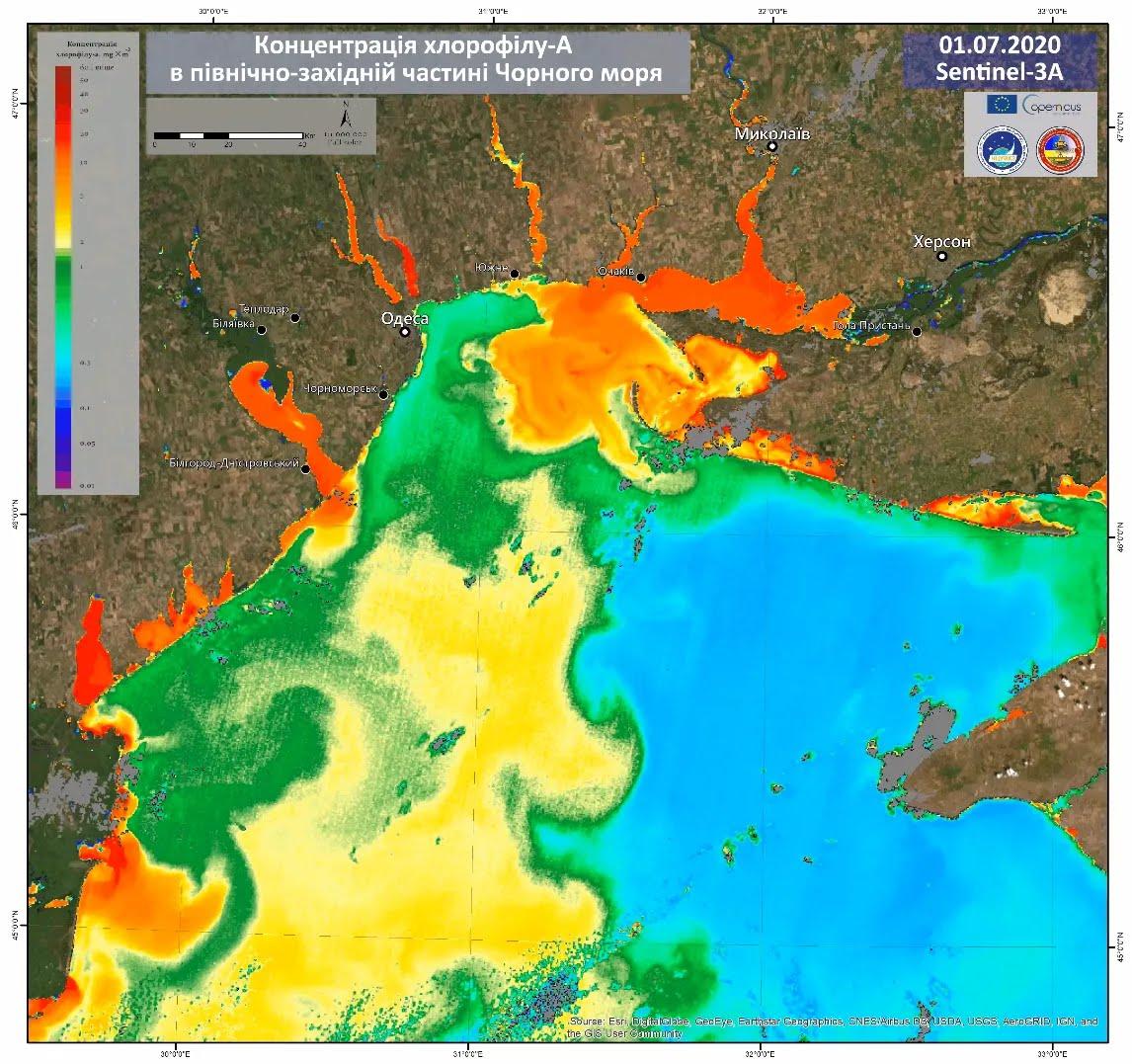 Цветение воды в Черном море