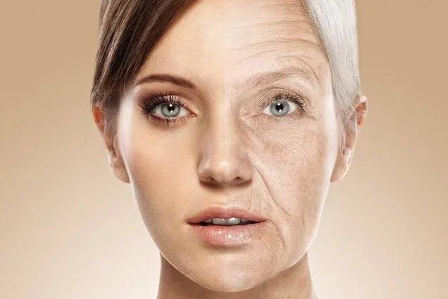 Ученые нашли ключевую причину старения